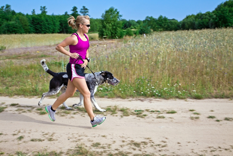 Runs are more fun with your pooch by your side!