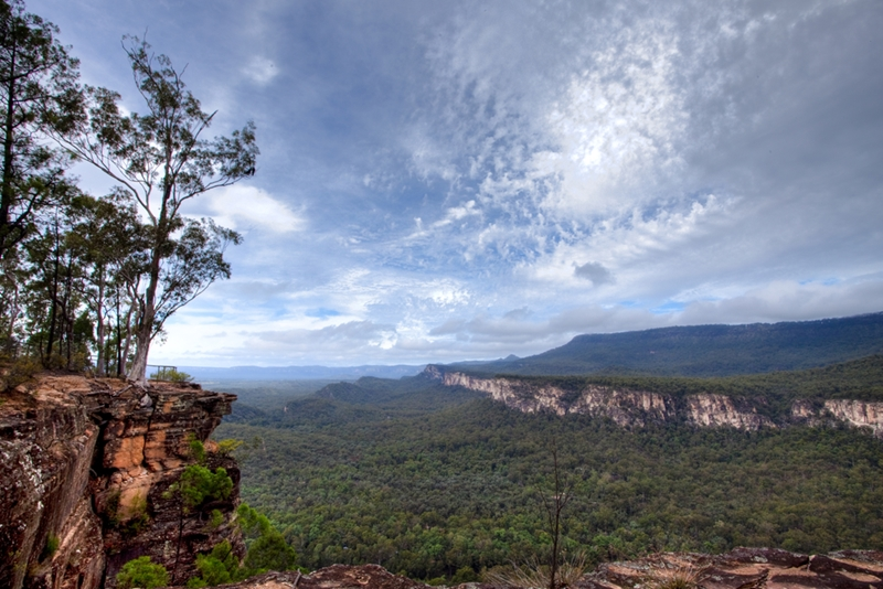 The Carnarvon Gorge sets the scene for a dramatic proposal.