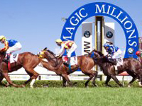 Horses Sprinting Past the Finish Line in the Magic Millions Race at the Gold Coast Turf Club