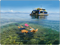Man and Woman Snorkelling the Great Barrier Reef in Cairns with a Reef Vessel in the Background