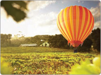 Orange and Yellow Striped Hot Air Balloon Landing in a Grassy Paddock Next to a Farmhouse