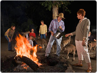 Group of Friends Hanging Around The Fire with Kangaroos Nearby
