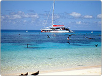 Passions of Paradise Reef Cruise Vessel Pictured from the Shore Surrounded by Blue Water