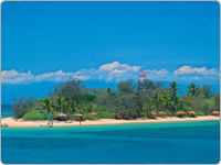 Beautiful Island in the Great Barrier Reef Cairns Toured by Shaolin Low Isles Port Douglas Reef Cruises