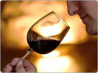 Man Holding a Glass of Red Wine and Smelling the Aroma
